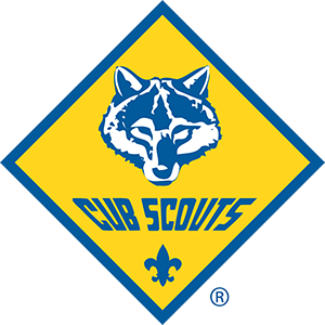 What is Cub Scouting?