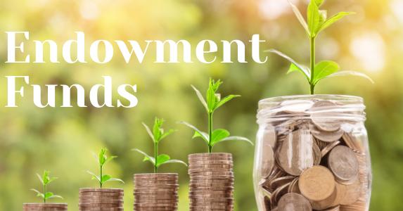 Endowment-Funds-1